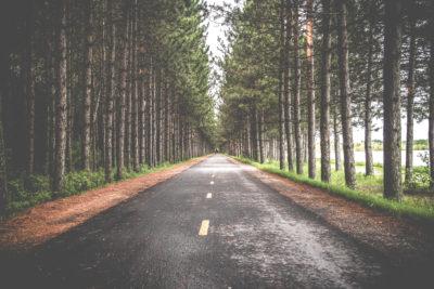 Dromen richting geven | Nobly